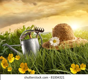 Water can and straw hat laying in field of corn with sun