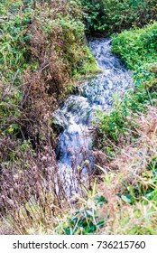Water cascading along a stream with motion blur to emphasise motion