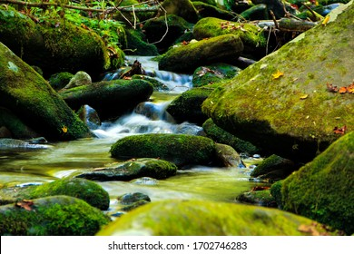 Water cascading through rocks in the Smoky Mountains