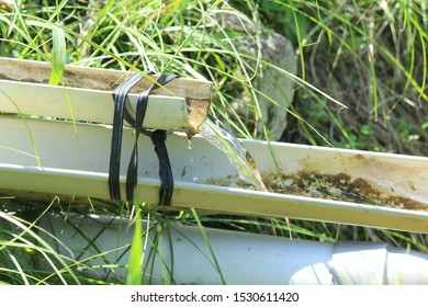 water channel in the side of the rice field