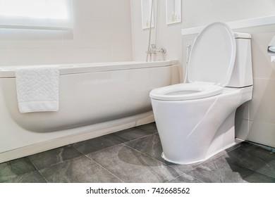 Water closet in bathroom.