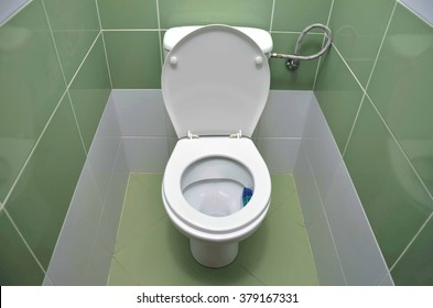 Water closet tiled by fresh green material