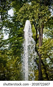 water composition with fountain close up