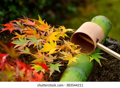 Water dipper on stone basin with red maple leaves at Enkoji Temple in Kyoto, Japan,selective focus.