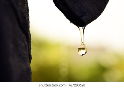 water drop falling from something