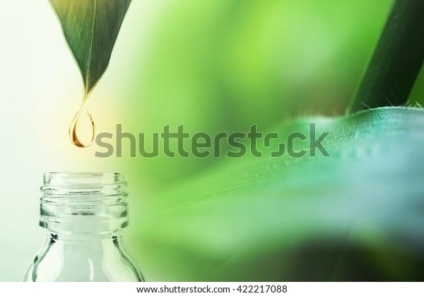 自然化学のコンセプトのための葉と研究室の水滴