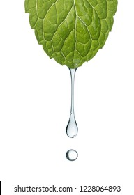 Water drop from mint leaf isolated on a white background,depth of field.