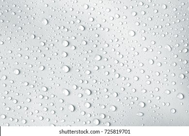 the water drop on white background