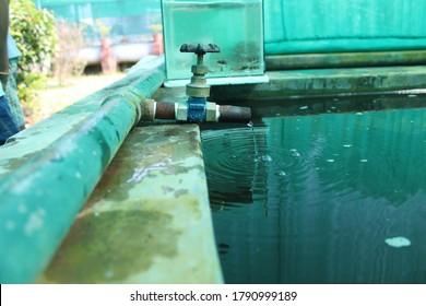 water droping from beautiful water pipe hose  hd