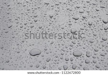 Water Drops Template Stock Illustration Water Drops Vector Logo