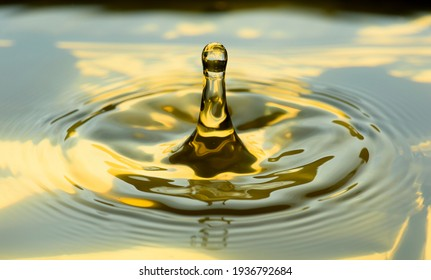 Water drops frozen at high speed in golden pool of water showing surface tension and droplet structure when hitting poll of water