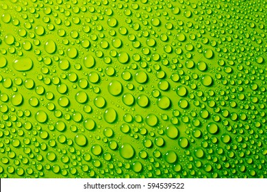 water drops on green background.