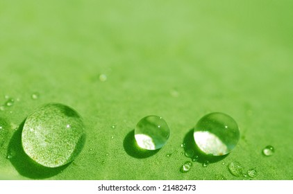 water drops on green leaf (shallow DOF), series n1