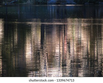 Water during sunset