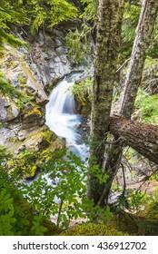 Water fall in Cristian fall area,scene in mt.Rainier National park, Wa