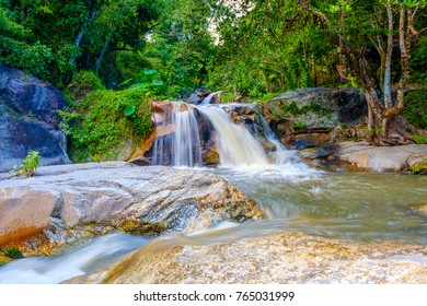 Water fall scenery wildlife at Nam Tok Kao Jones, Suan Phueng, Ratchaburi, Thailand