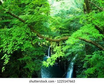 The water fall in Takachiho Gorge,Miyazaki,Japan