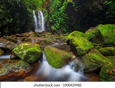 Water falls of the Lamington National Park