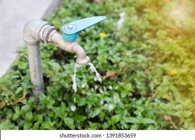 The water from the faucet. forget to turn off the faucet. water saving wastage of water.