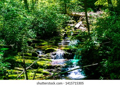 water flowing over rocks in a babbling forest brook