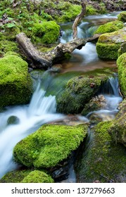 Water flowing over rocks covered with moss in small stream.