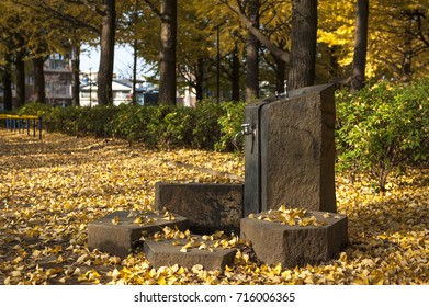 Water Fountain with ginkgo leaves in autumn, Tokyo, Japan.