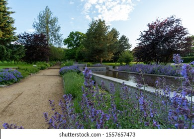 Water games and lavender in city Ilsenburg