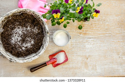 Water gel granules absorb water and stored water is available to release gradually to plant roots as needed gives healthier growing environment. Prevents over and under watering concept, studio shot.