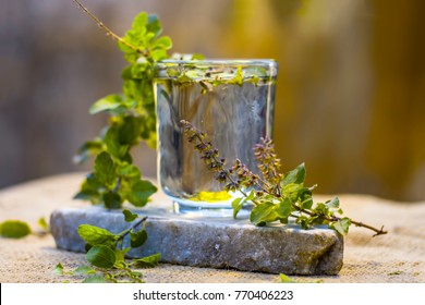 Water of holy basil, tulsi or Ocimum tenuiflorum in a transparent glass.
