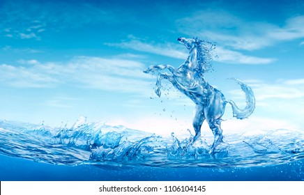 Water horse out of water splashes and foam.
