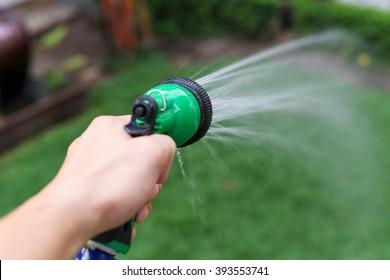 water hose or spray into the green garden yard