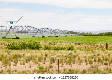 Water irrigation of crops