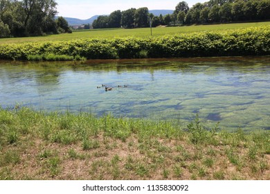 water, landscape, nature, brook, lake
