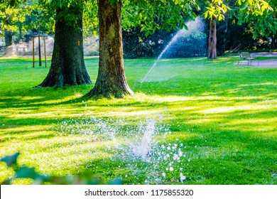 Water leak or malfunctioning diffuser. Concept of water wastage in a public park on a sunny summer day