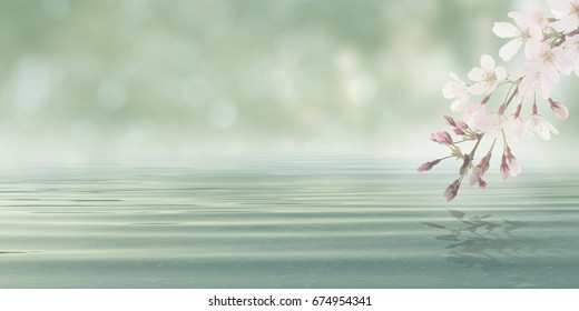 Water with leaves and flowers from blossom plant - Abstract Bokeh Spa Background