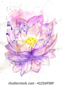 Water lily, lotus flower, watercolor painted illustration.