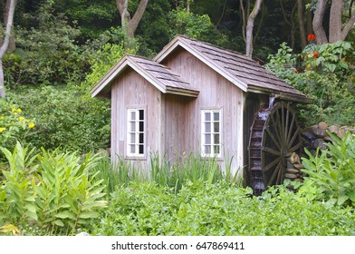 Water mill closeup in the forest