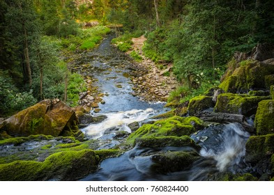 water, moss and stones: forest waterfall