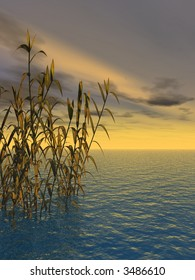 Water plants on a sea sunset  background  -  3D scene.
