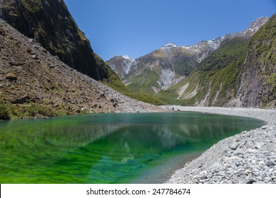 Water pond filled with vivid green algae located near the famous Fox Glacier, South Island, New Zealand.