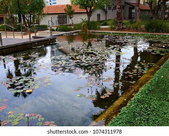 Water pond in the middle of the famous urban landmark Sarona area Tel Aviv Israel