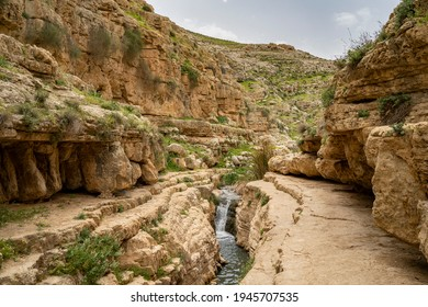 Water in the Prat brook, on the edge of the Judea desert, Israel, at spring time.