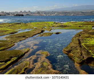 Water puddles at low tide, The confital, coast of Las palmas, Gran canaria, Canary islands