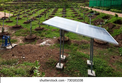 Water pump powered by solar cell at plantation