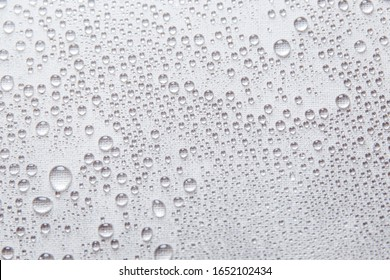 Water rain drops or water drops on white background. Many water drops on background