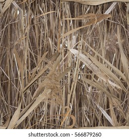 Water Reed pattern. Suitable for the concept of military or hunter uniforms, protective devices, military equipment and weapons.