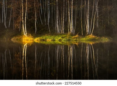 Water reflections of autumn birch trees in lake