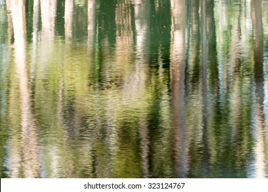 Water Reflections, Lukens Lake, Yosemite National Park, California. USA
