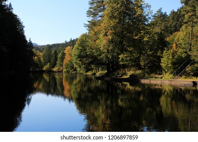 Water reflections at the shore of a lake in the beautiful nature in fall, Allgäu, Bavaria