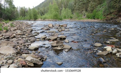 Water rushes through a rocky creek in the Delores, Colorado mountains. The rocky shore on the horizon stretches to the Colorado mountain pine trees.